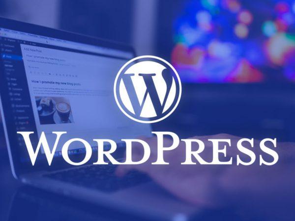 Curso de WordPress en 5 sencillos pasos